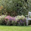 waterperry10fbcoverweb thumbnail